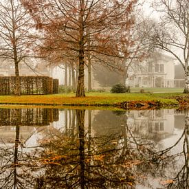 Het Park in de mist van Frans Blok