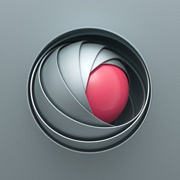 Kogelomhulsels grijs-roze van Jörg Hausmann