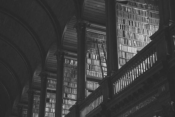 Oude Bibliotheek van Sander Monster
