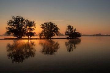 Weerspiegeling bomen in water met zonsopkomst van Moetwil en van Dijk - Fotografie