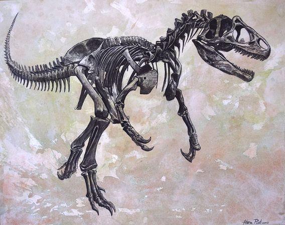 Allosaurus skelet