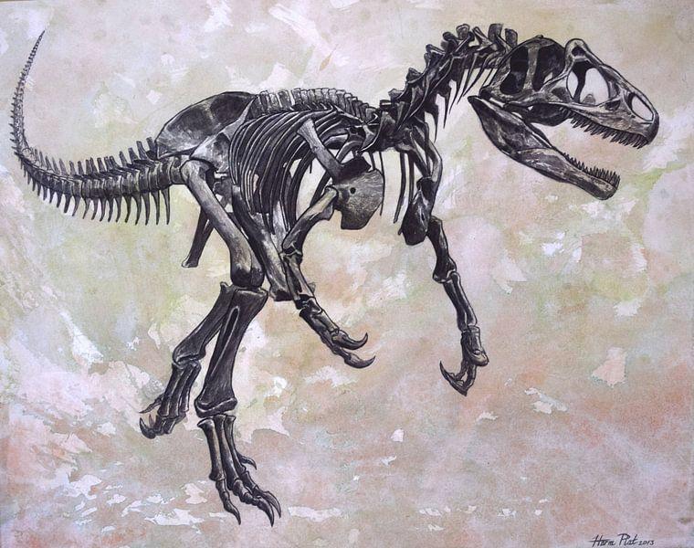 Allosaurus skelet van Harm Plat
