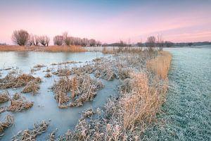 Nederland waterland, Gorssel