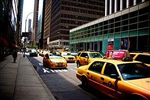 Yellow Cabs in New York van