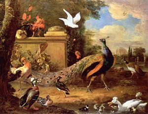 Pauwen en andere vogels bij een meer, Melchior d'Hondecoeter