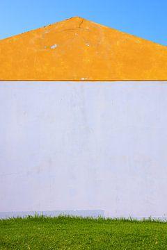 Oranje wit groen huis symmetrie van Jan Brons