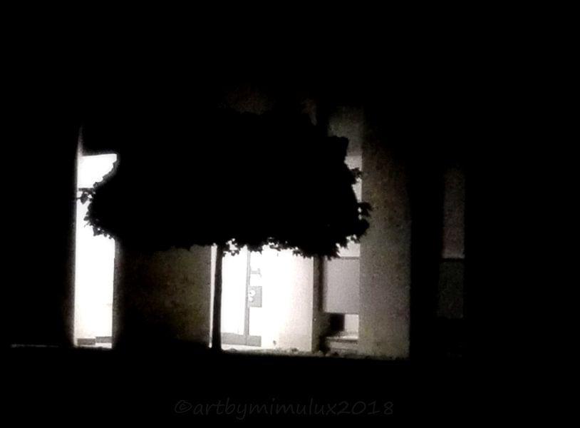 LIGHT & SHADOW 16 von mimulux patricia no