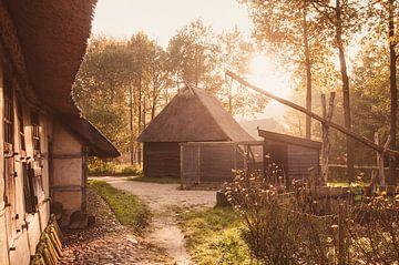 Herbst von Nancy van Verseveld