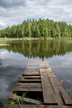 Verlaten steiger in Estland