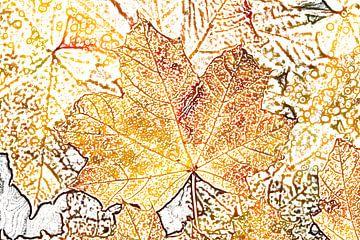 Kleurrijk esdoornblad in de herfst, abstract van Torsten Krüger