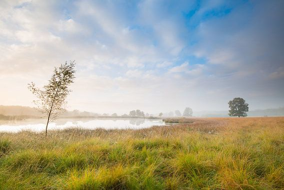Zonsopkomst in Drenthe van Mark van der Walle