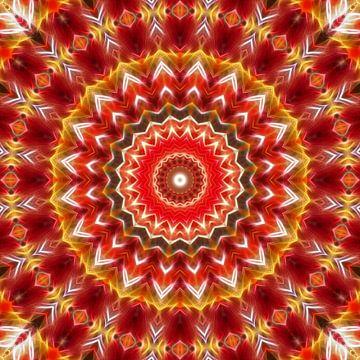 Mandala India Summer von Marion Tenbergen