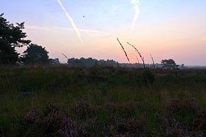 Zonsopkomst op de Asselse Heide van Wiljo van Essen