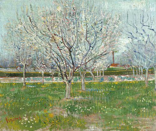 Blühender Pfirsichbaum - Vincent van Gogh von 1000 Schilderijen