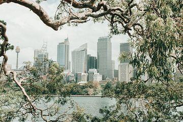 Uitzicht op de skyline van Sydney van Reis Genie
