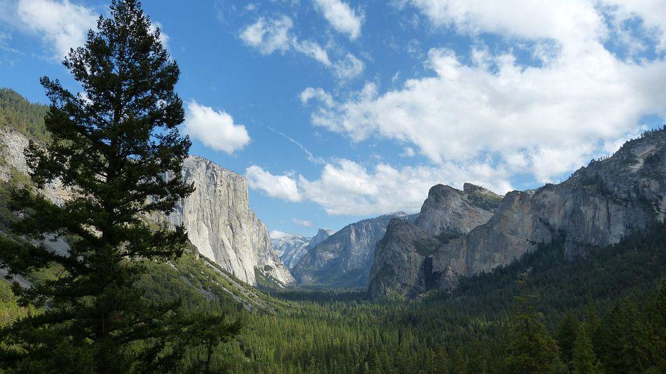 Yosemite tunnelview van Josina Leenaerts