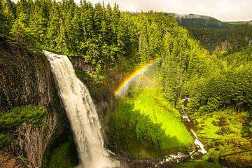 Waterval met regenboog in Oregon van Leo Schindzielorz