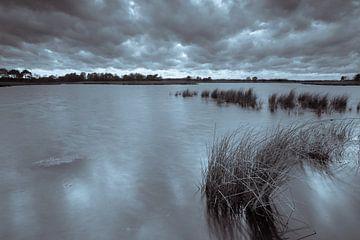 Strabrechtse Heide 183 von Deshamer