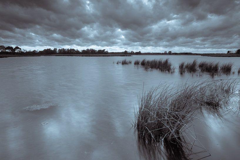Strabrechtse Heide 183 van Deshamer