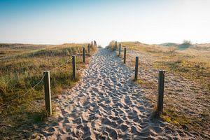 Le chemin de la mer sur Martin Wasilewski
