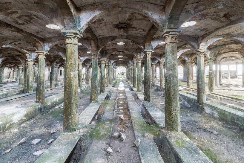 Verlaten cementfabriek von Truus Nijland
