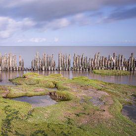 Wattenmeer von Fotografie Egmond