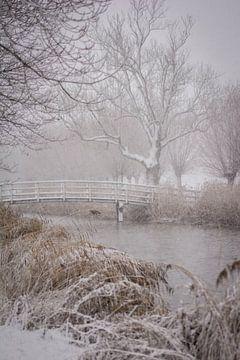 Winterstorm van Eelke Brandsma