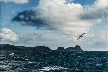 Cabo de Sao Lourenco Silhouette von Dirk Wüstenhagen