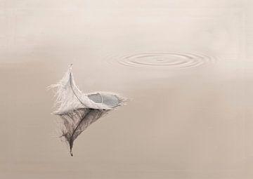 Veer in water van Erik Busstra