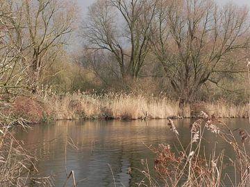 Water weerspiegeling aan de waterkant in de herfst von Ingrid Van Maurik