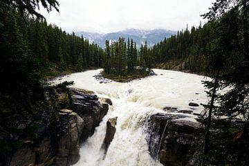 Sunwapta Falls in Canada van Nathan Marcusse