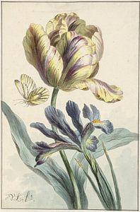Tulp en iris, Willem van Leen