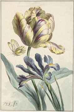 Tulpe und Iris - Willem van Leen