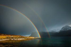 Double Rainbow van Judith Noorlandt