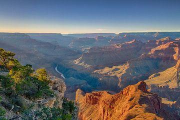 Mohave Point, Grand Canyon van Koen Henderickx
