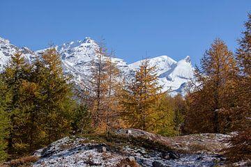 Findelntal mit Rimpfischhorn und Strahlhorn, Zermatt, Schweiz von Torsten Krüger