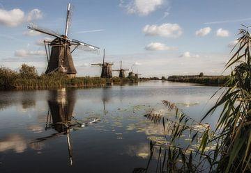 de 5 van Kinderdijk van Yvonne Blokland
