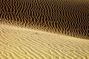 Dünen von Playa del Ingles