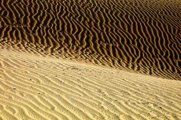 Dünen von Playa del Ingles  van