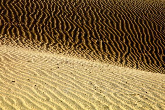 Dünen von Playa del Ingles  van Renate Knapp