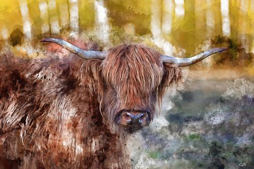 Aquarel Schotse hooglander