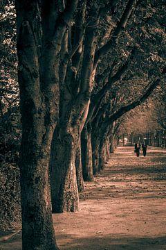 Parijs, Jardins des Champs-Élysées van Elma Mud