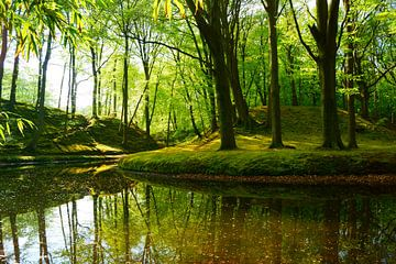 Wald von
