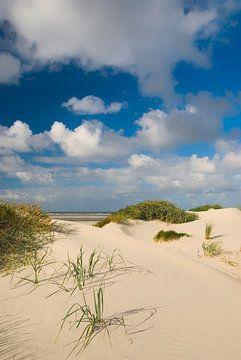 Duinen op Rottum eiland in de Waddenzee van Sjoerd van der Wal