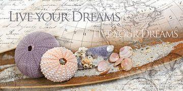 Leef je dromen uit van christine b-b müller