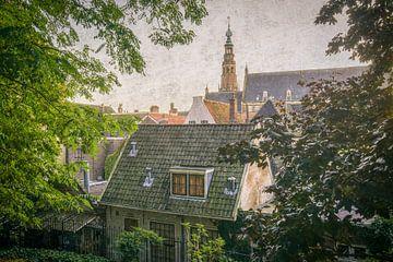 Zicht vanaf De Burcht van Dirk van Egmond