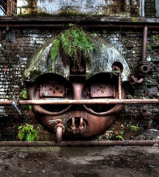 Willkommen in meinem Dschungel von Kirsten Scholten
