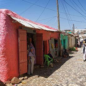 kleurige citadel van rene schuiling