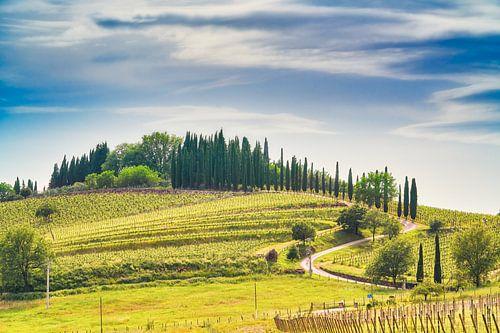 Avond in Toscane van