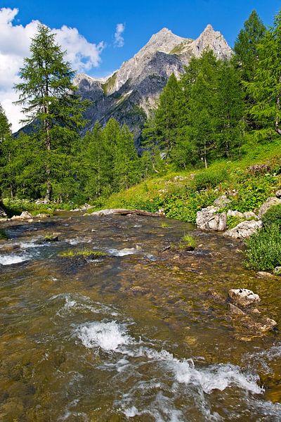 Berg rivier in de Alpen van Anton de Zeeuw